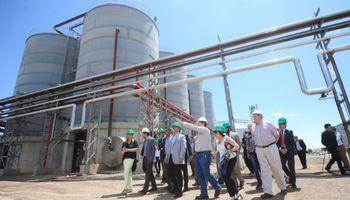 Bioetanol: la industria quiere invertir u$s 400 millones