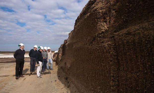 Los emprendedores observan el silo de maíz que se destina a la producción de biogás. Foto: Diego Lima