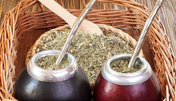 Blendeo de yerba: nueva tendencia para volver a las raíces del mate