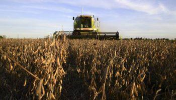4 de cada 10 dólares exportados por Argentina en 2019 fueron generados por maíz, trigo y soja