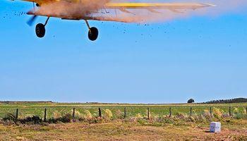 Lanzan 15 mil bombas de semillas para reforestar áreas en emergencia ambiental