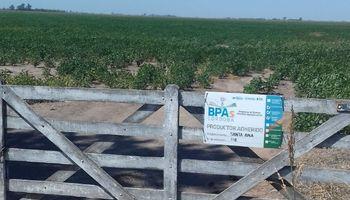Córdoba busca que las buenas prácticas agrícolas sean una política de Estado nacional