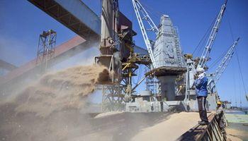 Brasil comprará trigo ruso y pone en alerta a la Argentina