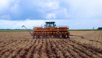 Soja: avanza la siembra en Brasil