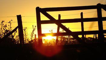 Un buen clima será fundamental en campo arrendado