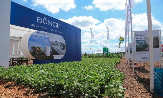 Bunge presentará las oportunidades de comercialización y logística de los granos. Foto: Prensa Expoagro.