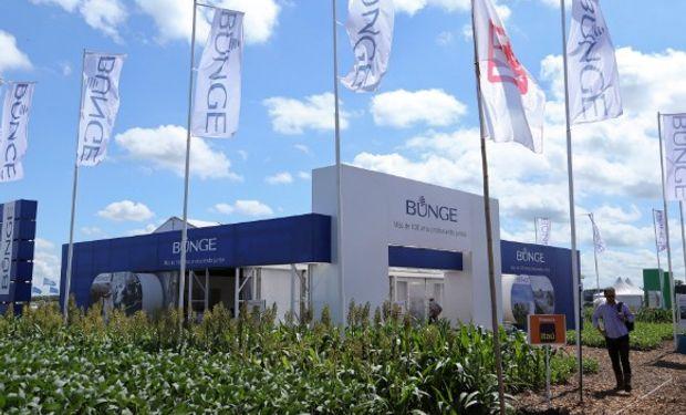 Bunge Argentina es una de las compañías agroindustriales más importantes y mejor integrada del país.