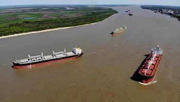 Soja y maíz suben en Chicago sostenidos por el paro de aceiteros en los puertos