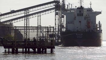 El SENASA supervisará las embarcaciones que exporten granos a granel