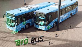 Del campo a la ciudad: la soja gana terreno en el transporte público