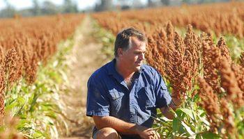 Una encuesta asegura que las elecciones no afectan las decisiones de los productores