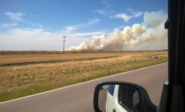 El incendio se inició pasadas las 15 de ayer en cercanías de Ombucta.