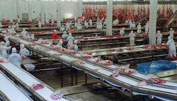 Cadena de carnes: conocé los puntos claves del nuevo Registro Fiscal