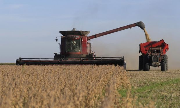 Un fabricante de sembradoras de Armstrong dijo que los productores están demandando un 30 o 40 por ciento menos que en un año normal.