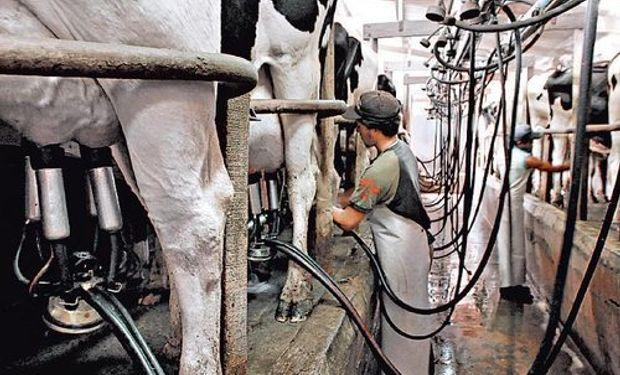 Se profundiza caída en la producción láctea