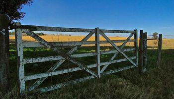 """Hay más campos a la venta, pero el mercado inmobiliario rural se ve afectado por la """"enorme incertidumbre económica"""""""