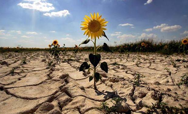 Para 2030 podrían reducirse en un 18% los gases de efecto invernadero .