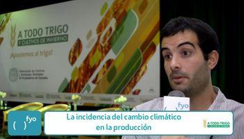 Cambio climático: ¿Cómo impacta en la producción de trigo?