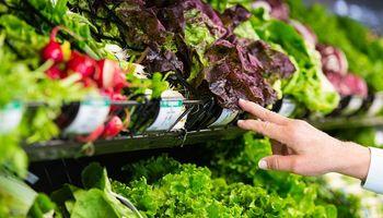 La brecha de precios entre productor y consumidor cayó un  7,1%