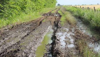 Caminos rurales rebalsados de agua: ¿se complica la cosecha?