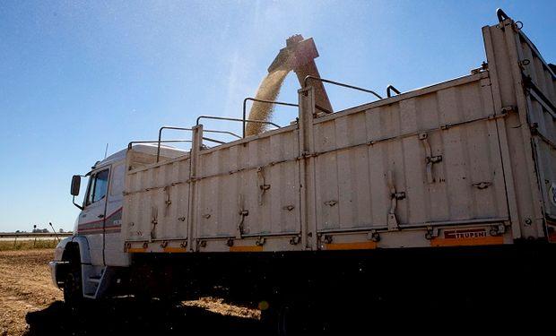 AFIP secuestró más de 200 toneladas de maíz de cinco camiones que circulaban con documentación falsa