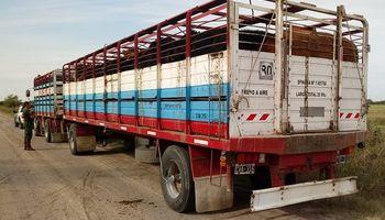 Prorrogan la validez de habilitación sanitaria para el transporte de animales