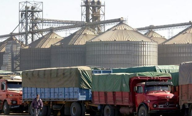 Se calcula que al cinturón rosarino, el polo aceitero más grande del mundo, ingresan alrededor de 6.000 camiones por día en esta época.
