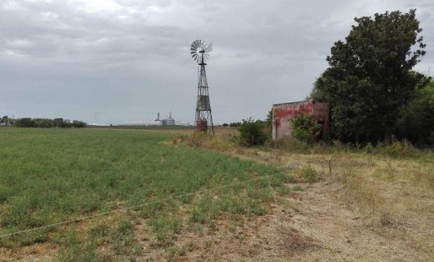 Las lluvias impactaron en las reservas de agua y se encuentran óptimas para el trigo