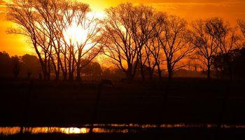 Tiempo: temperaturas agradables anticipan un cambio en el ambiente