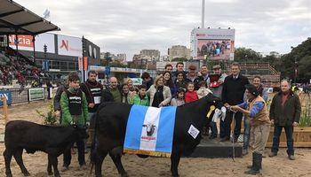 La Sultana y Doña Anita se quedaron con el Gran Campeón Hembra Brangus en Palermo