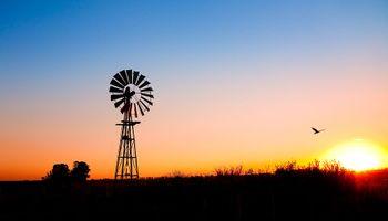 Federados reclaman crear una Agencia de comercio de granos
