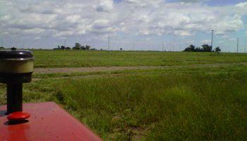 Las lluvias vinieron muy bien para los cultivos de AgroActiva