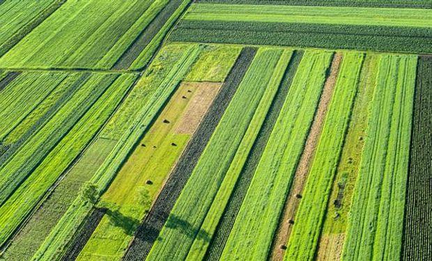 Agricultura: última contraofensiva para frenar a los ambientalistas.