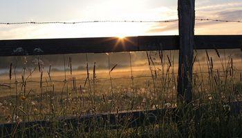 El censo rural relevará más de 190 millones de hectáreas