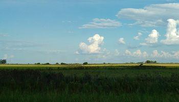 Los balances del agro incorporan conceptos para reflejar mejor las pérdidas por eventos climáticos