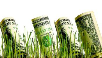 El campo será clave en la recuperación del consumo interno