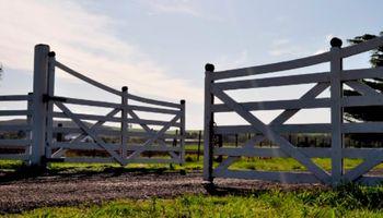 Detectan alzas en torno del 60% en el inmobiliario rural bonaerense