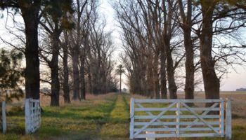 Se ajustó la categorización de Pyme agropecuaria: ¿Cuál es el nuevo límite?