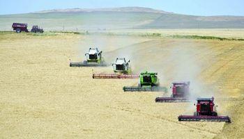 El campo argentino en números: ¿Qué nos aporta la producción?