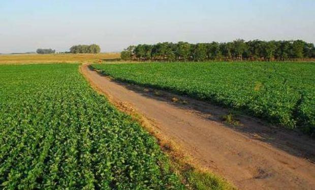 El campo tiene 17.566 hectáreas.