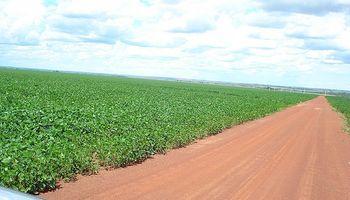 Inmobiliario rural: prima la cautela