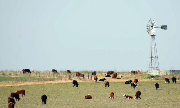 Productores entrerrianos reiteraron el pedido de declaración de la emergencia agropecuaria por sequía