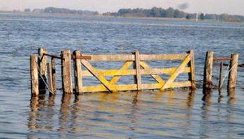 """Sostienen que la agricultura continua es """"responsable"""" de las inundaciones recurrentes"""