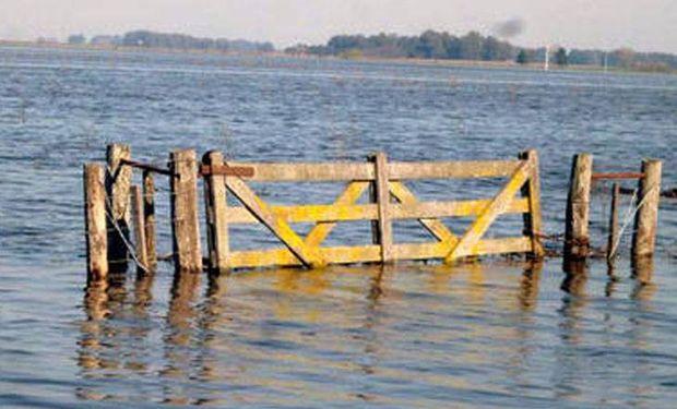Campo inundado en la Provincia de Buenos Aires.