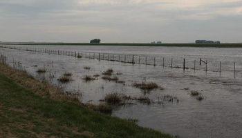¿Por qué nos inundamos? Mitos y verdades sobre la siembra directa