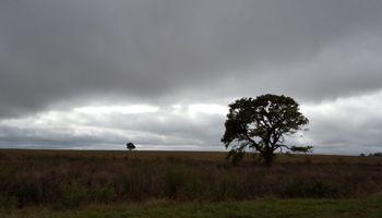 Las lluvias regresarían el sábado a la zona núcleo luego de atravesar una semana estable
