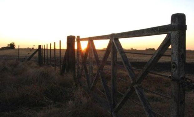La venta de campos, de pymes y la construcción, ganan con el revalúo.