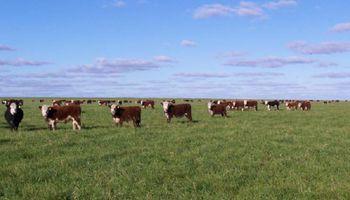 Campos ganaderos con el freno de mano