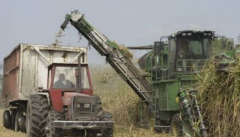 Agroindustria entregó nuevas cosechadoras a pequeños productores de Tucumán
