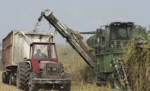 Fue a través de un programa patrocinado por el Ministerio de Agroindustria de la Nación.